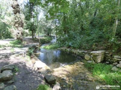 Vuelta al Senderismo-Valle Lozoya; rutas senderismo sierra de gredos parque natural de las sierras s